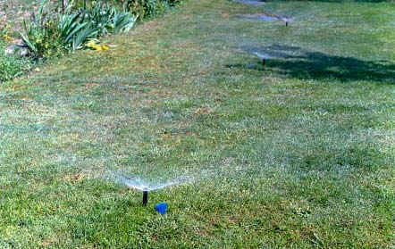 Landscape and lawn sprinkler markers